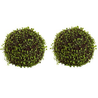 Link to 9-inch Mohlenbechia Ball (Set of 2) Similar Items in Decorative Accessories