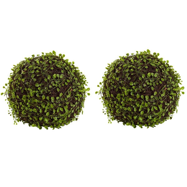 9-inch Mohlenbechia Ball (Set of 2). Opens flyout.