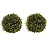 9-inch Mohlenbechia Ball (Set of 2)