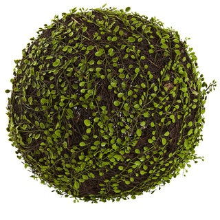 Link to 15-inch Dia. Mohlenbechia Ball - Green Similar Items in Decorative Accessories