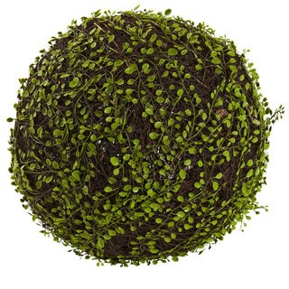 15-inch Dia. Mohlenbechia Ball