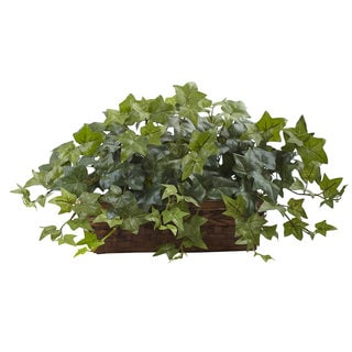 Puff Ivy w/Ledge Basket