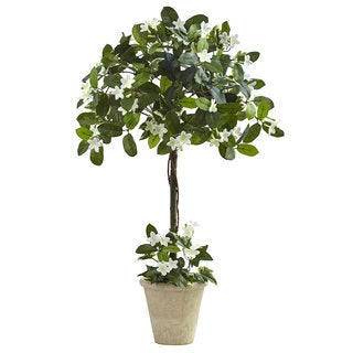 3-foot Stephanotis Topiary w/Planter