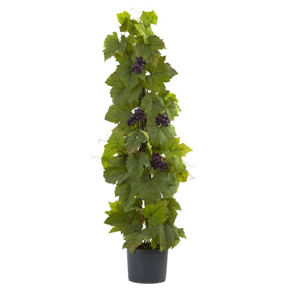 40-foot Grape Leaf Deluxe Climbing Plant