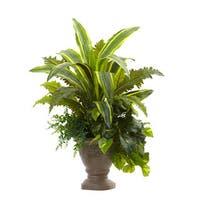25-inch Mixed Yucca, Marginatum, Pothos & Bracken w/Planter