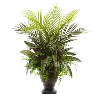 27-inch Mixed Areca Palm, Fern & Peacock w/Planter