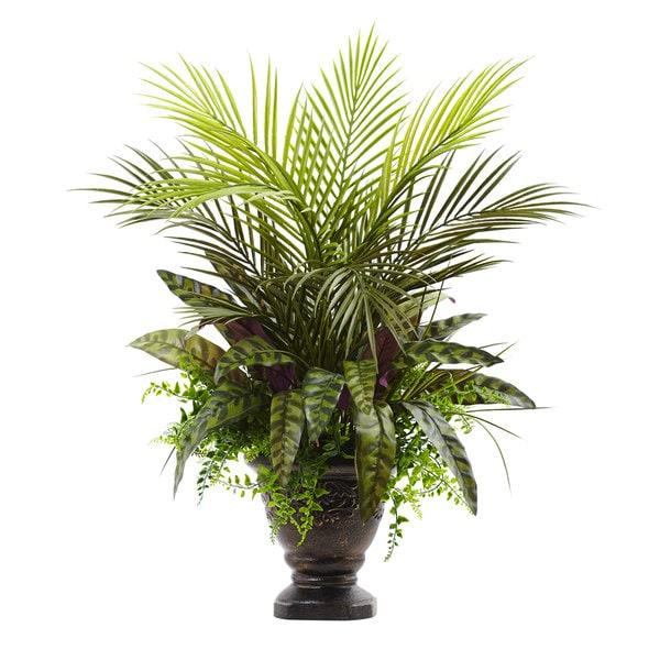27-inch Mixed Areca Palm, Fern & Peacock w/Planter