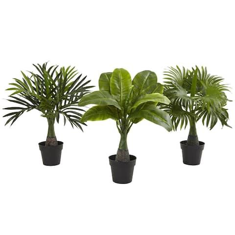 Areca, Fountain & Banana Palm (Set of 3) - Green