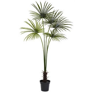 The Curated Nomad Zaius 7-foot Fan Palm Tree UV Resistant (Indoor/ Outdoor)