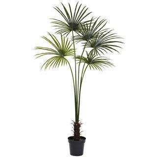 7-foot Fan Palm Tree UV Resistant (Indoor/Outdoor)