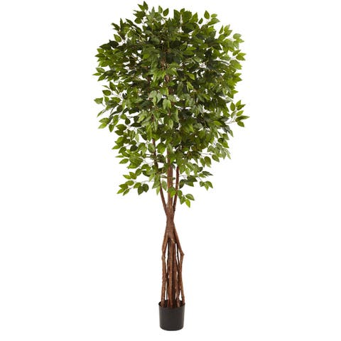 7.5-foot Super Deluxe Ficus Tree