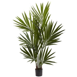 4-foot Kentia Palm Silk Tree