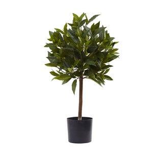 2-foot Sweet Bay Mini Ball Topiary