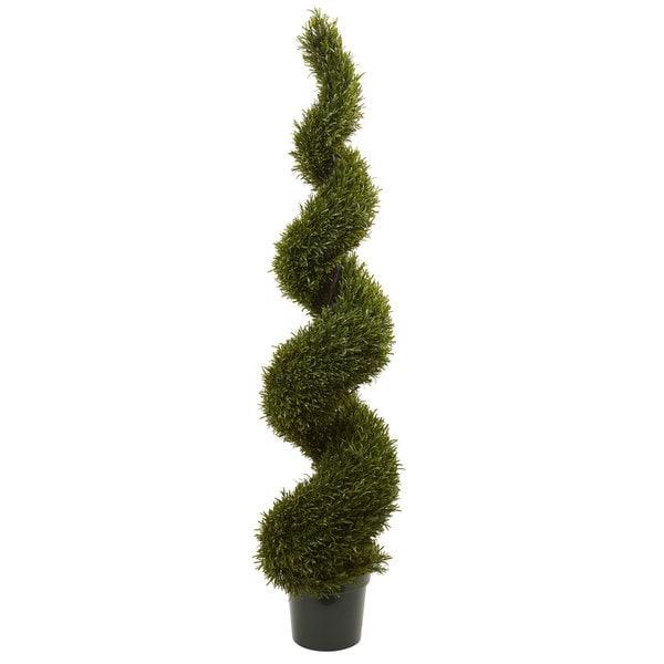 6-foot Rosemary Spiral Tree (Indoor/Outdoor)