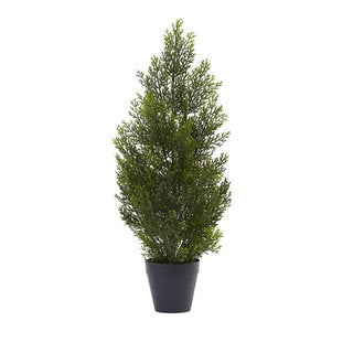 2-foot Mini Cedar Pine Tree (Indoor/Outdoor)