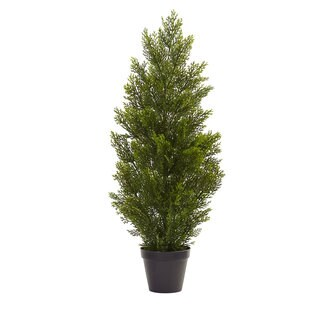 3-foot Mini Cedar Pine Tree (Indoor/Outdoor)