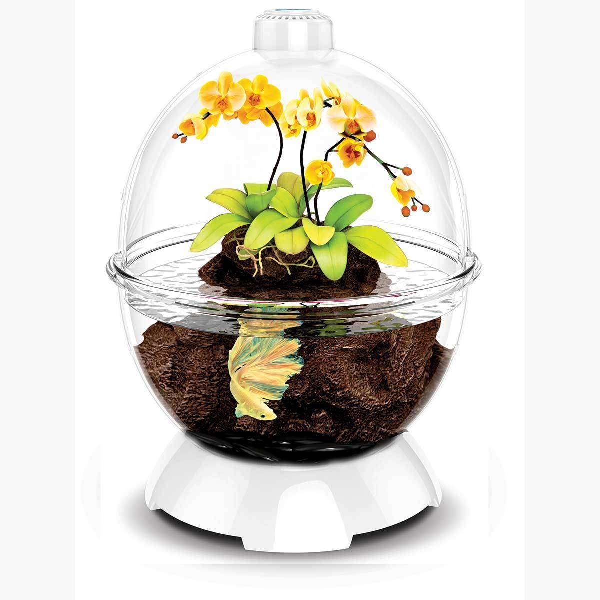BioBubble Wonder Bubble Terrarium (White)