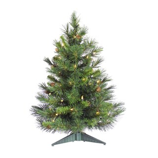 "2' x 17"" Cheyenne Pine Tree with 50 Warm White LED Lights"