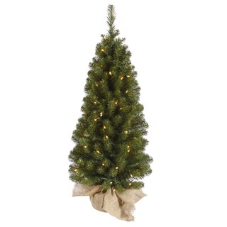 """36"""" x 18"""" Felton Pine Tree with 50 Clear Lights and 185 Tips"""