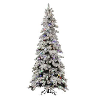 "6' x 36"" Flocked Kodiak Spruce Tree with 450 Multi-Colored Lights and 50 G40 LED Lights"