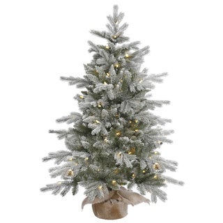 "48"" x 32"" Frost Sable Pine Tree with 100 Warm White Italian LED Lights"
