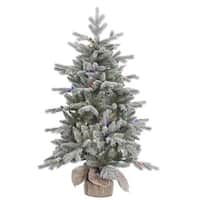 "48"" x 32"" Frost Sable Pine Tree with 100 Multi-Colored LED Lights"