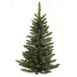 5' Camdon Fir Wall Tree with 513 Tips