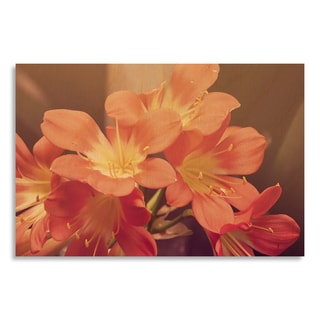 Gallery Direct New Era Photography, 'Pink Blossoms' Printed on Birchwood Wall Art