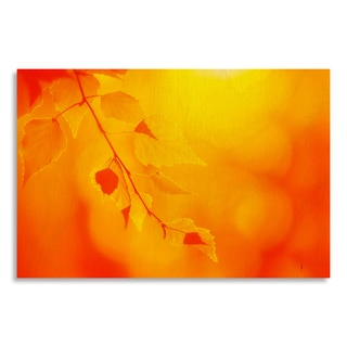 Gallery Direct White Birch Leaves in an Indian Summer' Print on Birchwood Wall Art