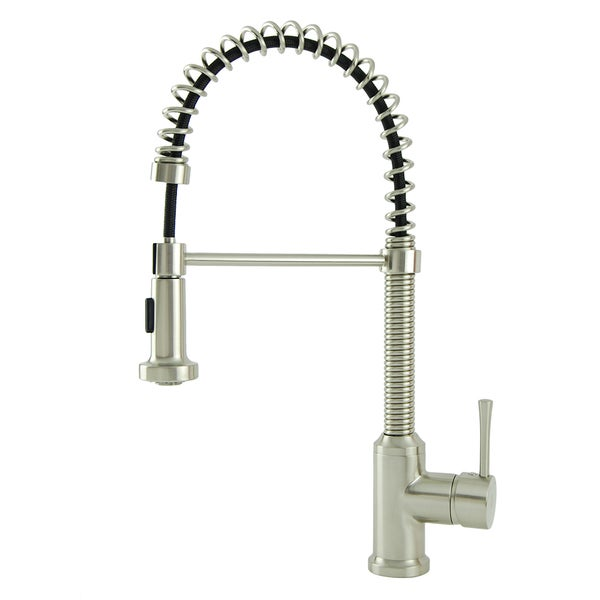 S Series Residential Brushed Nickel Spring Coil Kitchen Faucet
