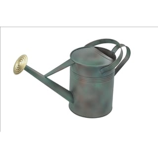 Alliyah Handmade Green Watering Fine Galvanized Can