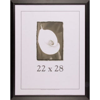 Black Narrow Picture Frame 22x28