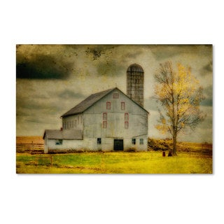 Lois Bryan 'Old Barn on Stormy Afternoon' 30x47 Canvas Wall Art