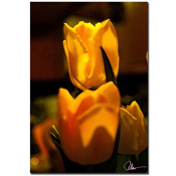 Martha Guerra 'Tulip Blooms II' 22x32 Canvas Wall Art