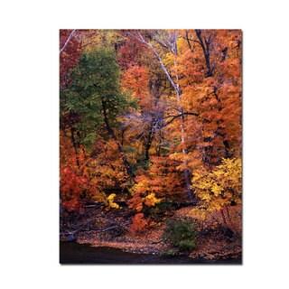 Kurt Shaffer 'I Love Autumn' 18x24 Canvas Wall Art