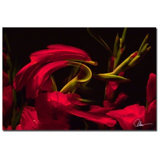 Martha Guerra 'Gladiolus III' 16x24 Canvas Wall Art