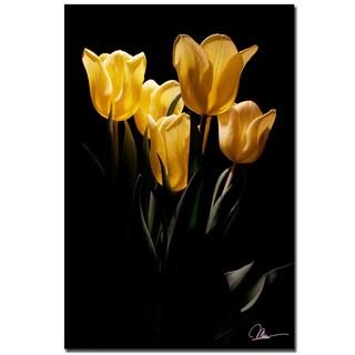 Martha Guerra 'Yellow Blooms III' 16x24 Canvas Wall Art