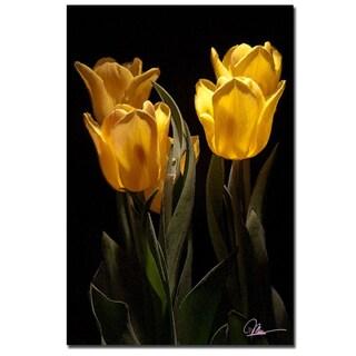 Martha Guerra 'Yellow Blooms II' 16x24 Canvas Wall Art