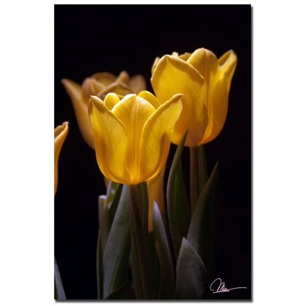 Martha Guerra 'Yellow Blooms' 16x24 Canvas Wall Art