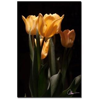 Martha Guerra 'Tulips Blooms VI' 16x24 Canvas Wall Art