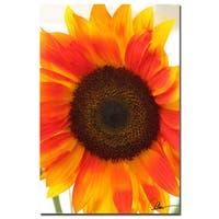 Martha Guerra 'Sunflower V' 16x24 Canvas Wall Art