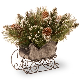 """National Tree Company 10"""" Glittery Bristle Pine Sleigh with 6 White Tipped Cones"""
