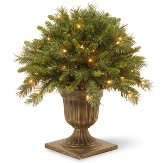 "24"" Tiffany Fir Porch Bush with Clear Lights"