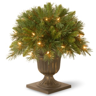 "18"" Tiffany Fir Porch Bush with Clear Lights"