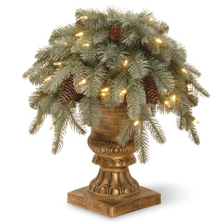 """18"""" Frosted Arctic Spruce Porch Bush with Clear Lights"""