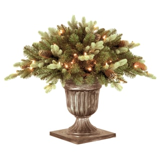 "24"" Copenhagen Blue Spruce Porch Bush with Clear Lights"
