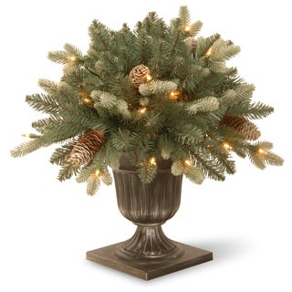 "18"" Copenhagen Blue Spruce Porch Bush with Clear Lights"