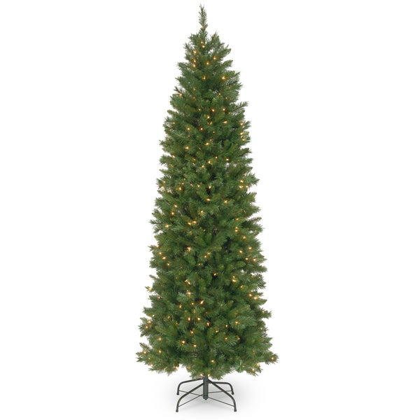 shop 7 5 ft pennington fir pencil tree with clear lights free shipping today. Black Bedroom Furniture Sets. Home Design Ideas
