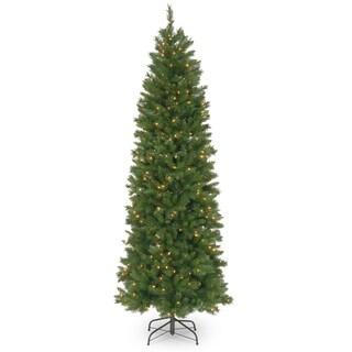 7.5 ft. Pennington Fir Pencil Tree with Clear Lights