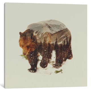 iCanvas Bear I by Andreas Lie Canvas Print